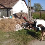 Müll vor dem Hof