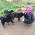 Elke beim Spaziergang mit den Hunden