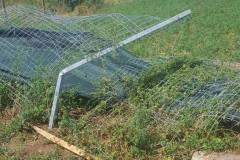 tornado-rumaenien-schutzhof-002