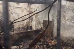 Unser-Schutzhof-nach-dem-Feuer-5